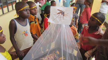 La gala de Harvard Club of Spain recauda más de 4.000€ para la malaria